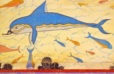 Delphinus-wall-art
