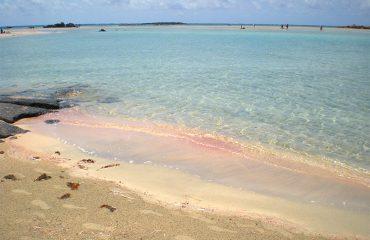 Elafonissi-Shades-Pink-Blue