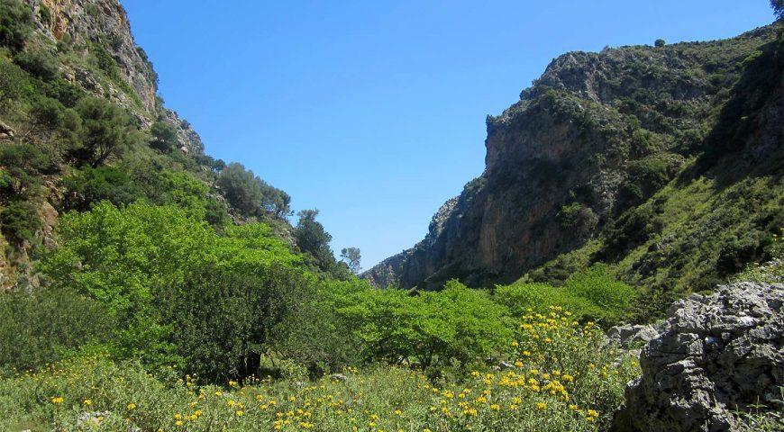 Sirikari-gorge