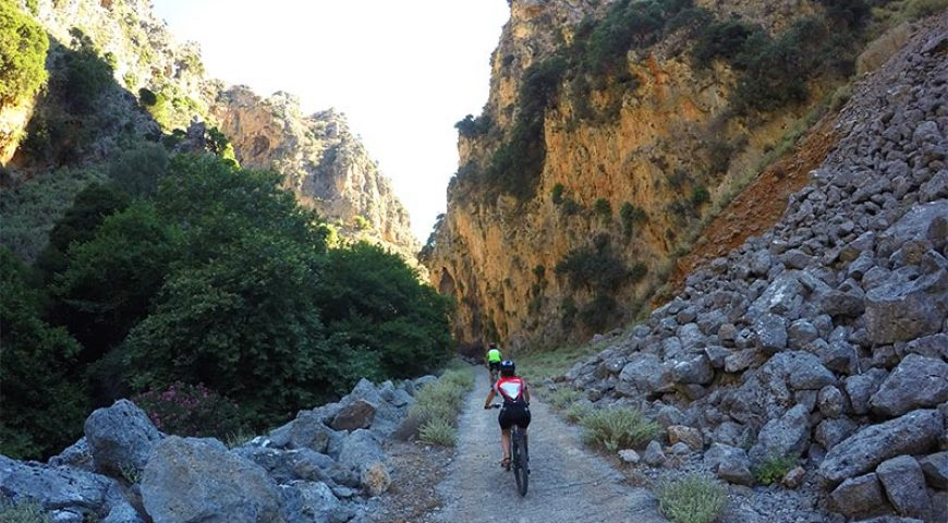 Cycle-Deliana-Downhill