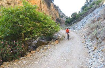Cycle-Deliana-Offroad