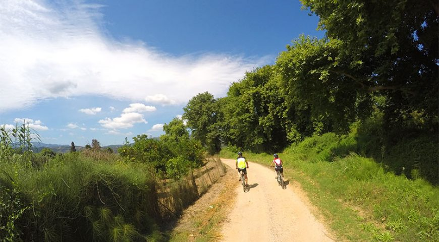 Cycling-Off-Road