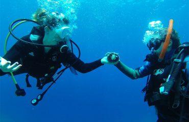 Divers-Sea-Urchin
