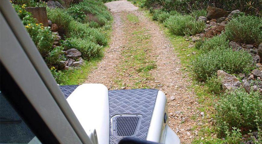 Jeep-Safari-Road